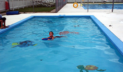 Unity Swimming Pool